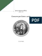 D-JSWeiss Concerto c-minor + TAB  CStringhi