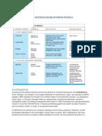 business model.docx