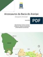 Arcossauros Da Bacia Do Araripe
