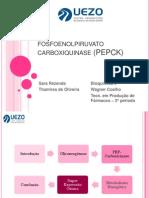 fosfoenolpiruvato carboxiquinase (PEPCK)