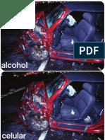 Alcohol Cansancio Celular