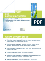 wheatqualityand broliers