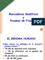 genomahumanofiliacion1-1226141394030747-9