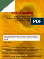 21332353-Lab-11-Boala-Marek