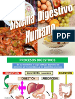 Diapositivas Aduni Sistema Digestivo