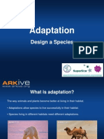 7-11yrs - Adaptation - Design a Species Activity - Classroom Presentation education