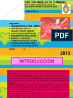 SIDA_EXPOSICION(1).pptx