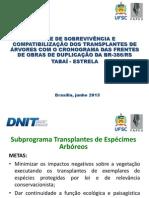 Apresentação Artigo Transplantes
