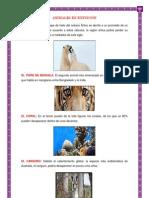 Animales y Plantas en Extinsion