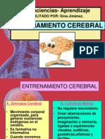 Clases  Entrenamiento Cerebral- gimnasia-.ppt