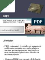 presentacion PRRS.pptx