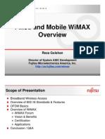 esc_wimax06.pdf