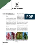Las chias de mexico.pdf
