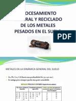 Expo Reciclado