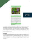La Importancia Del Saber de La Planta Viola