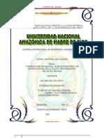 BPM =FLOR DE LIZ+reg