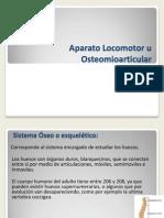 Clase 2 Anatomia Osteologia Generalidades