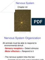 Ch. 44 Nervous System