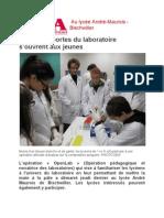 article DNA.pdf