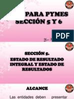 Sección+5+y+6(1)