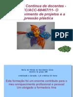 desenvolvimento de projetos e a expressão plástica- formação contínua professores