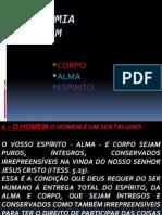 Tricotomia Humana.