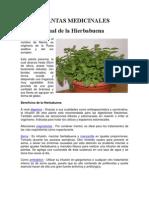 PLANTAS MEDICINALES 20013.docx