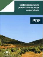 Sostenibilidad en La Produccion Del Olivar