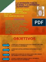 Exposicion Patologia Diabetes Mellitus