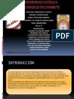 HEMANGIOMA - Grupo de PatologiA (2)