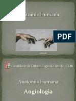 Anatomia Humana - Angiologia