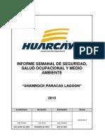 Informe Semanal de Seguridad y Salud Ocupacional