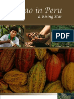 Cacao en Peru