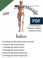 sistemaseo-muscular2-120305151443-phpapp02