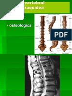 Clase 3 Anatomia Columna Osteologia