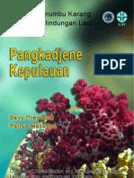 dpl_pangkep_08