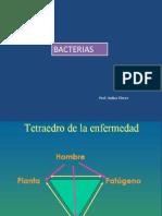 Unidad II Parte I I BacteriasUnefa