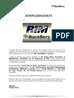 IVth SEM - Strategic Management Project Report - BlackBerry