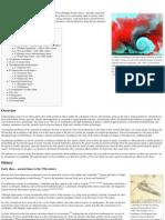 Aerodynamics - Wikipedia, The Free Encyclopedia