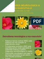 Dezvoltare Neuro Chisinau