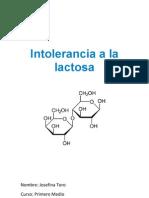 Intolerancia a La Lactosa - Informe