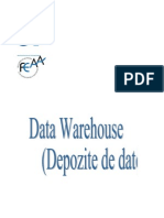 Depozite de Date -
