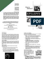 Epilepsy Ing.
