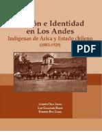 Nacion e Identidad en Los Andes