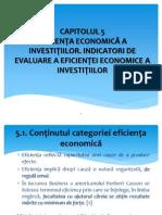 CAPITOLUL 5_Conceptul de Eficienta Si Indicatori_oct 2013