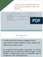 CULTIVOS DE CÉLULAS EN SUSPENSIÓN DE Azadirachta indica