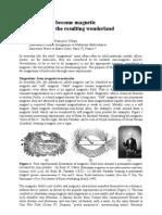 Verdaguer Text How Magnetism