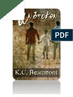 Unbroken Novel