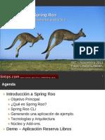 Presentacion Spring ROO-Paulo Clavijo-20111110