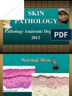 1  Primary and Secondary Lesions | Cutaneous Conditions | Skin